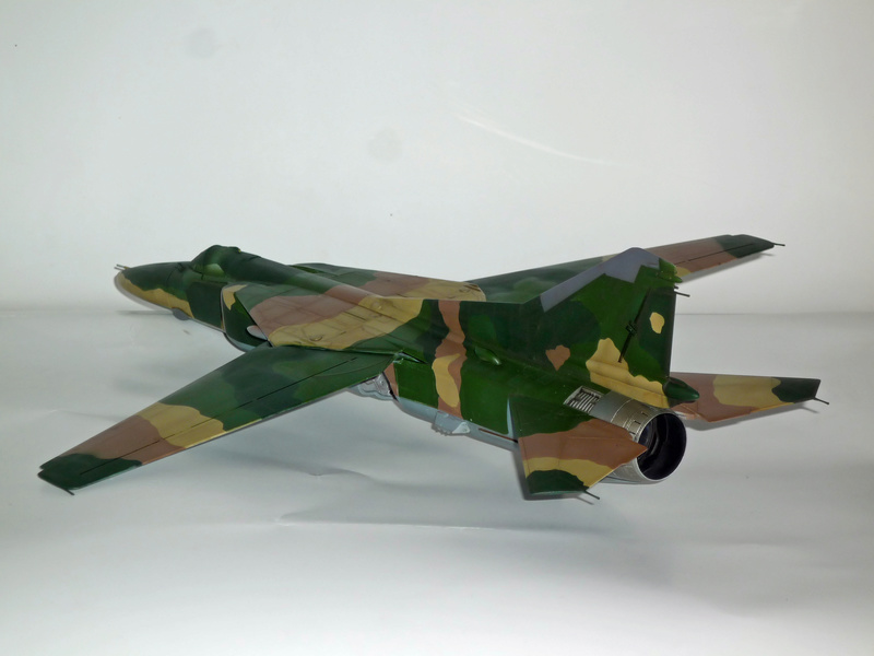 """MiG-27 """"Flogger-D""""; Trumpeter 1/48 - Page 3 P1100228"""