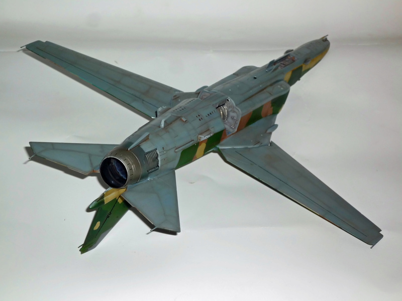 """MiG-27 """"Flogger-D""""; Trumpeter 1/48 - Page 3 P1100234"""