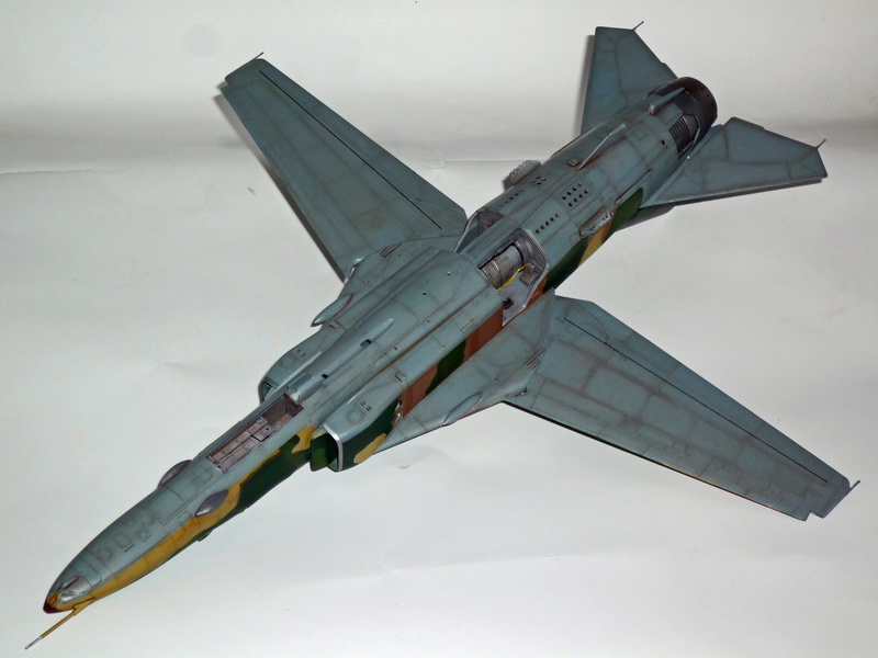 """MiG-27 """"Flogger-D""""; Trumpeter 1/48 - Page 3 P1100237"""