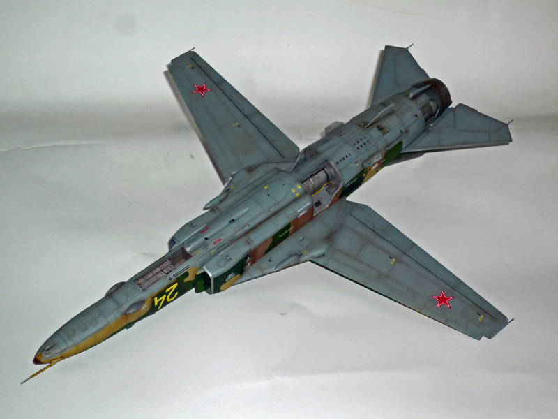 "MiG-27 ""Flogger-D""; Trumpeter 1/48 - Page 4 P1100245"