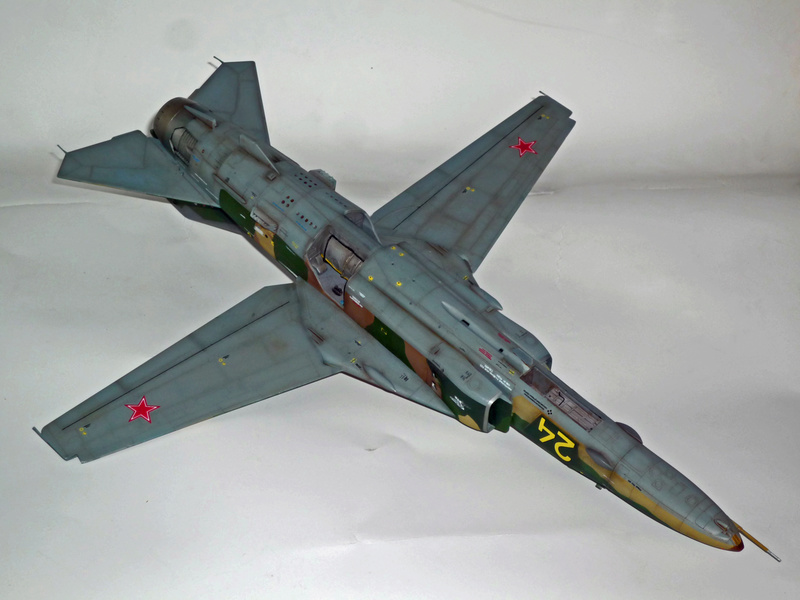 "MiG-27 ""Flogger-D""; Trumpeter 1/48 - Page 4 P1100246"