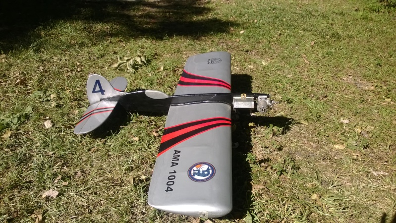 My New Planes - Got a Skyray kit Wp_20114