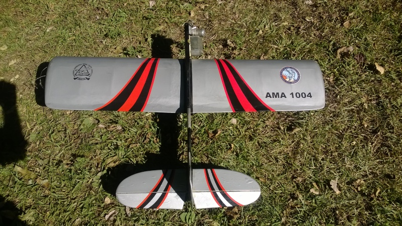 My New Planes - Got a Skyray kit Wp_20115