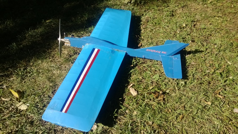 My New Planes - Got a Skyray kit Wp_20116