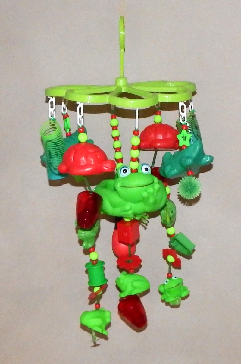 LECSI'S FUN-RICHMENT TOYS IN STOCK NOW Froggy12