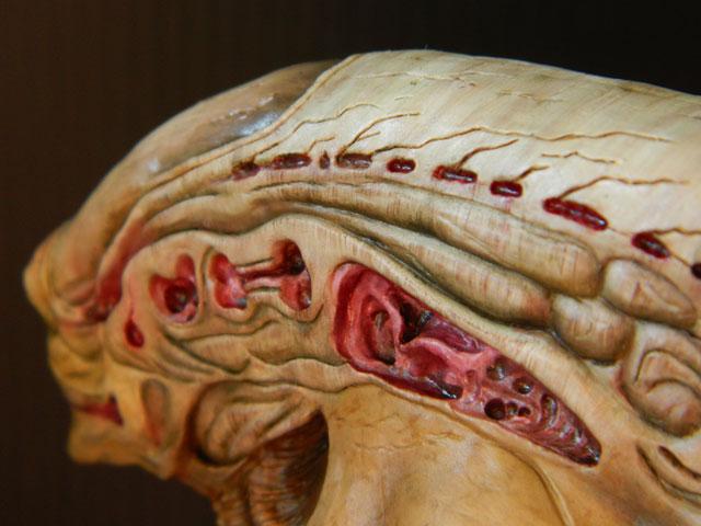 buste alien newborn 1/9 lamouline69 FINI !!! Dscn6532