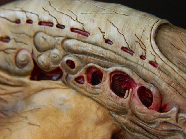 buste alien newborn 1/9 lamouline69 FINI !!! Dscn6543