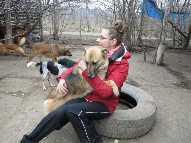 Nana, mère des chiots des ruines, 6 ans - Adoptée ! Img_2820