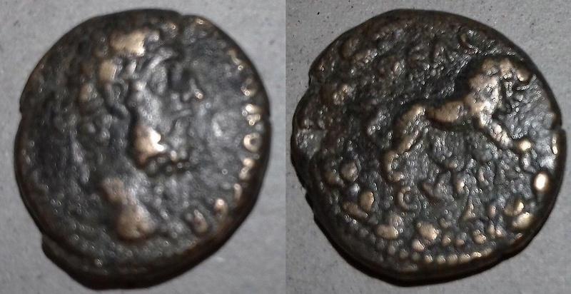 Bronze colonial syrien pour Commode (181-192), ville Hiérapolis Lion10