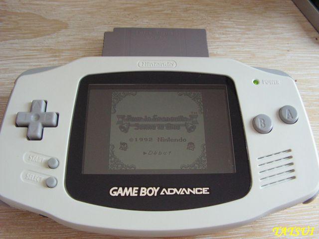 Mes réalisations, Game boy: Pour la grenouille sonne le glas Pict0124