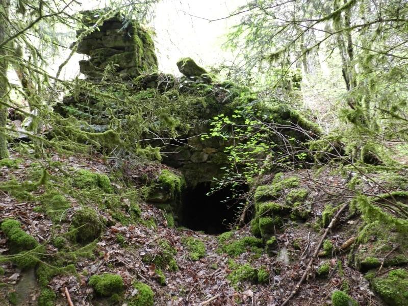 La vallée de la Truyère Dscn7310
