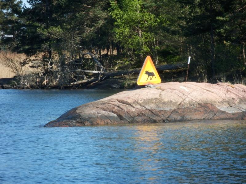 Voyage Suède P5140012