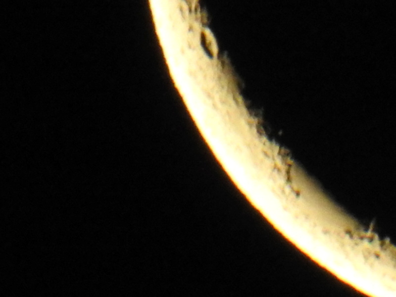 Off Topic Nikon P900  - Page 7 Dscn0016