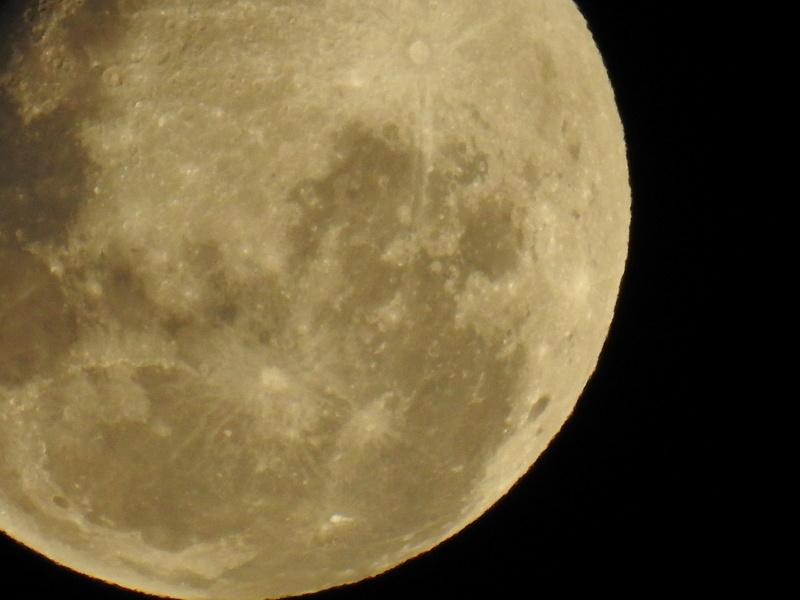 Off Topic Nikon P900  - Page 7 Dscn0117