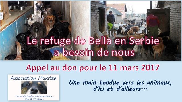 SERBIE : RAPATRIEMENT DU 11 MARS 2017 (Bella) Appel_10