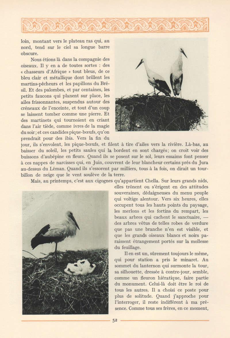VISIONS DU MAROC, André CHEVRILLON. - Page 2 15-vis11
