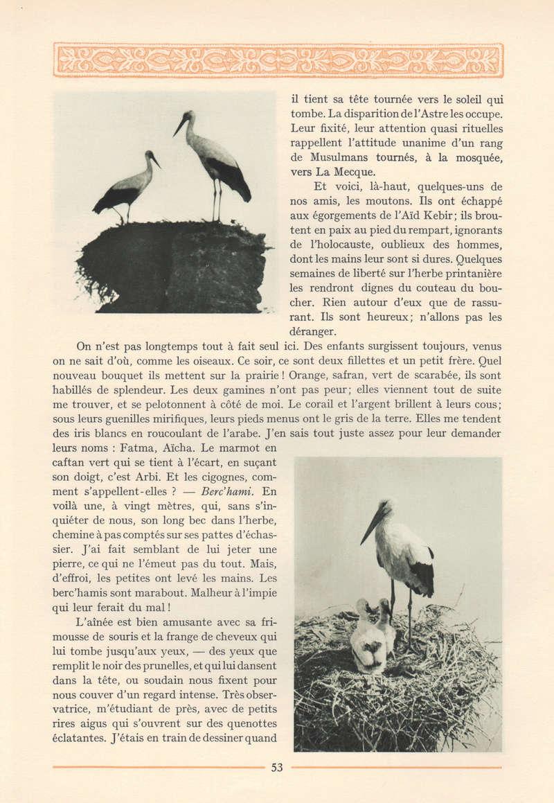 VISIONS DU MAROC, André CHEVRILLON. - Page 2 16-vis11