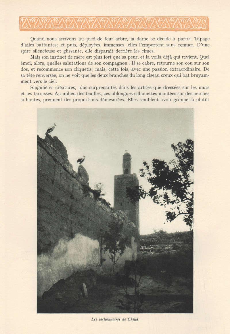 VISIONS DU MAROC, André CHEVRILLON. - Page 2 18-vis11