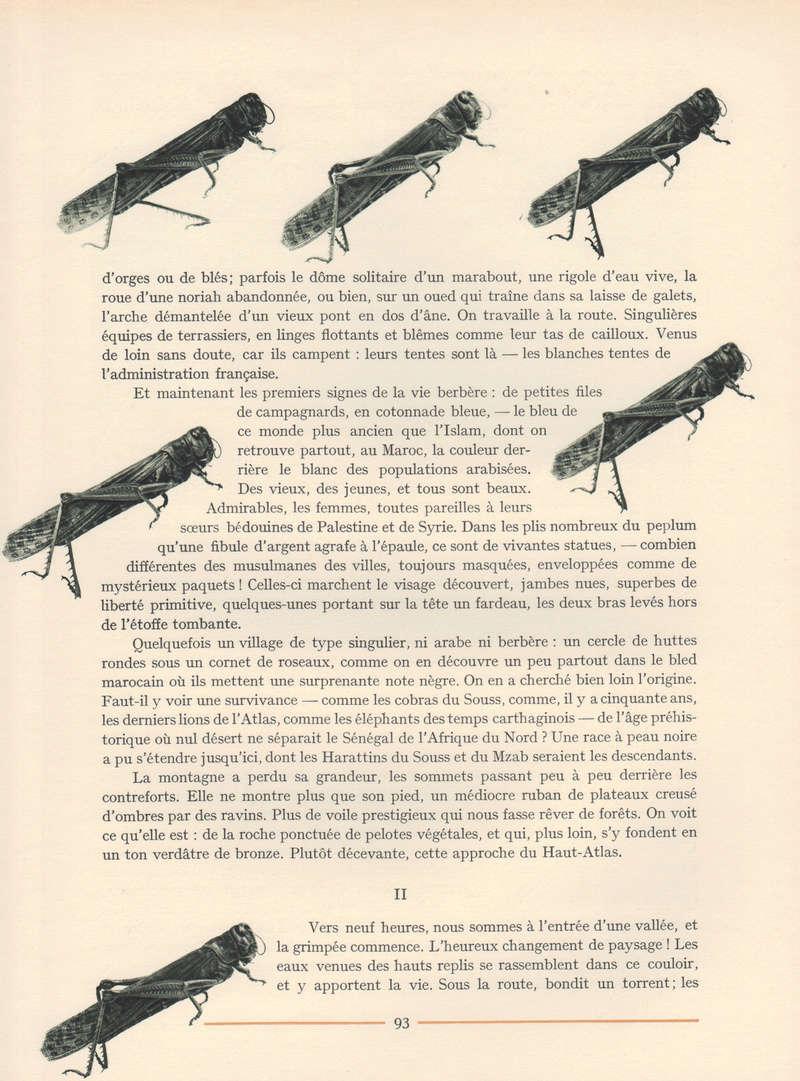 VISIONS DU MAROC, André CHEVRILLON. - Page 4 Vision87