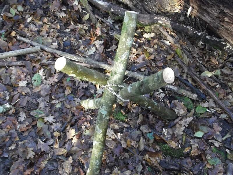 Alone in the woods 07,08-12-13 Dscf0816