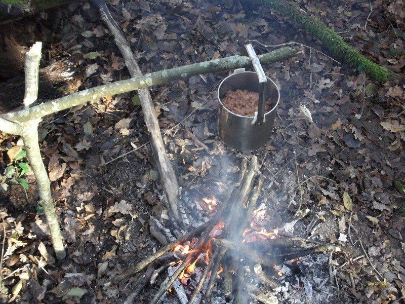 Alone in the woods 07,08-12-13 Dscf0817