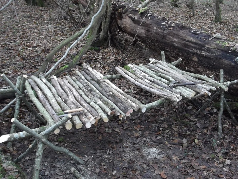 Alone in the woods 07,08-12-13 Dscf0819