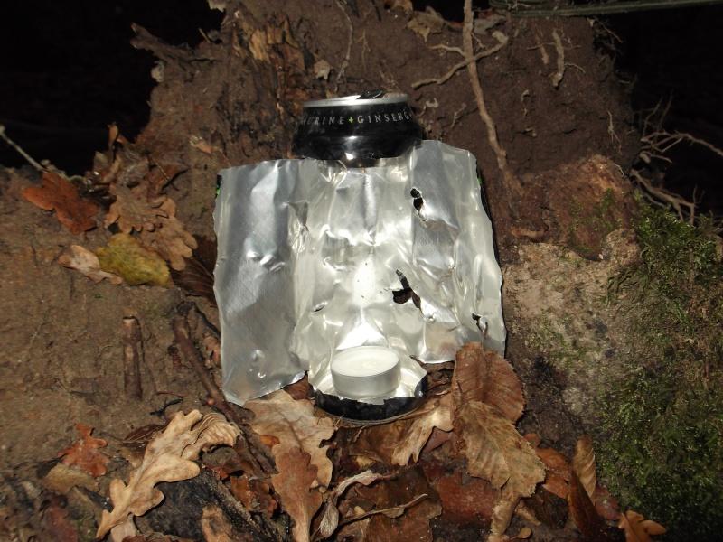Alone in the woods 07,08-12-13 Dscf0822