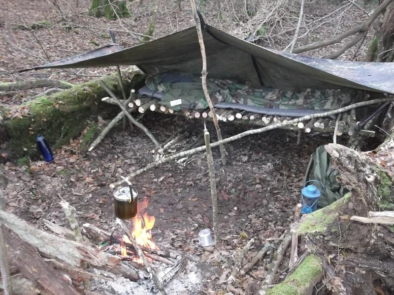 Alone in the woods 07,08-12-13 Dscf0826