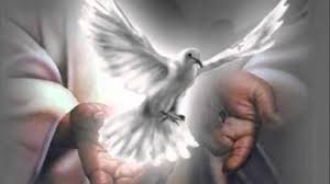 Neuvaine 2017 à l'Esprit Saint - pour demander les sept dons sacrés... Esprit11
