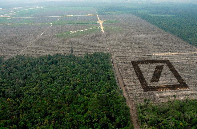 Les terres sont de plus en plus convoitées.... Blogg125