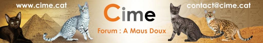Communauté Internationale du Mau Egyptien (CIME)