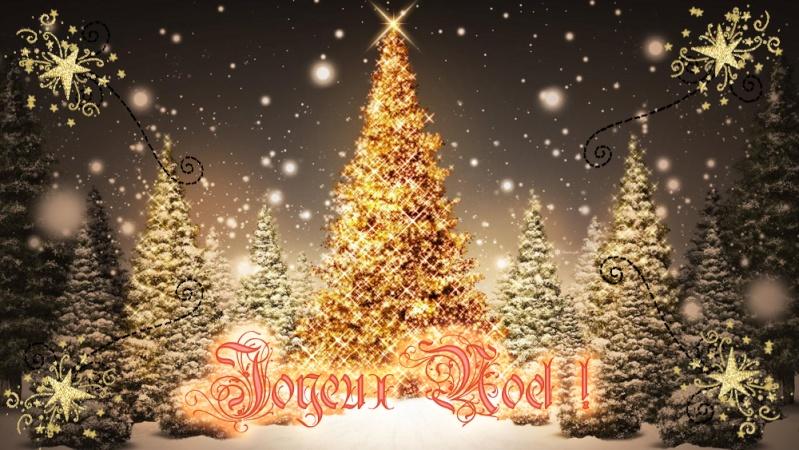 Noël / Jour de l'an Noal_210