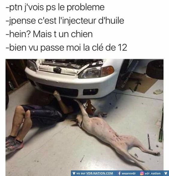 HUMOUR - blagues 03be7411