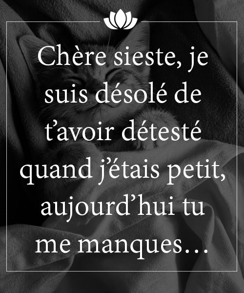 HUMOUR - blagues - Page 17 38639910