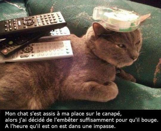 HUMOUR - blagues - Page 17 46008d10