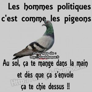 HUMOUR - blagues - Page 17 6441cd10