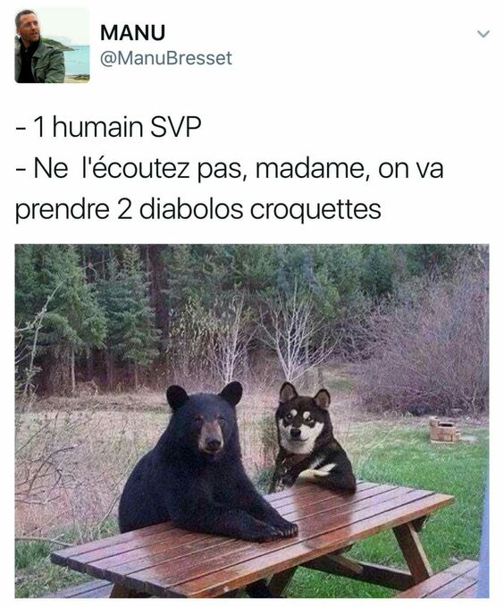 HUMOUR - blagues 65333811