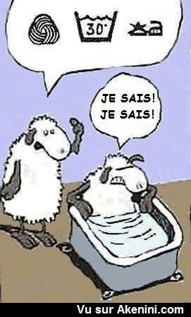 HUMOUR - blagues - Page 3 74ea1f10