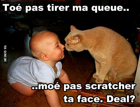 HUMOUR - blagues - Page 17 C007c110