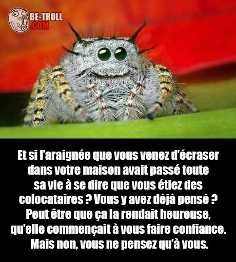 HUMOUR - blagues - Page 20 Ee131010