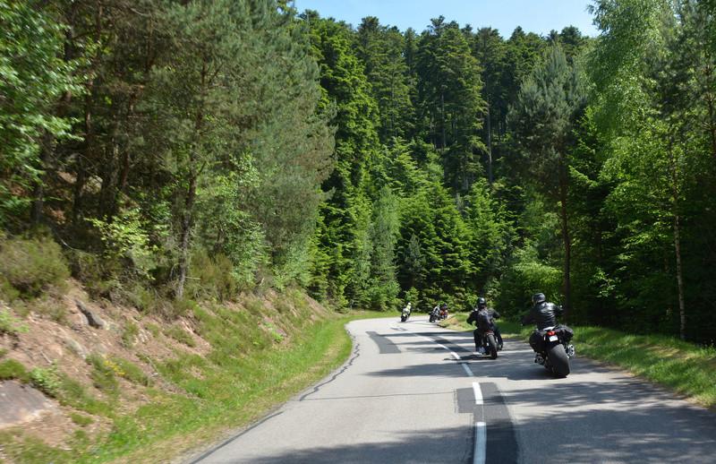 Balade en Forêt Noire - Page 2 Dsc_0536