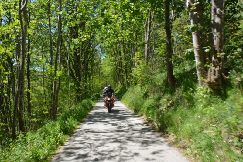 Balade en Forêt Noire - Page 2 Dsc_1012