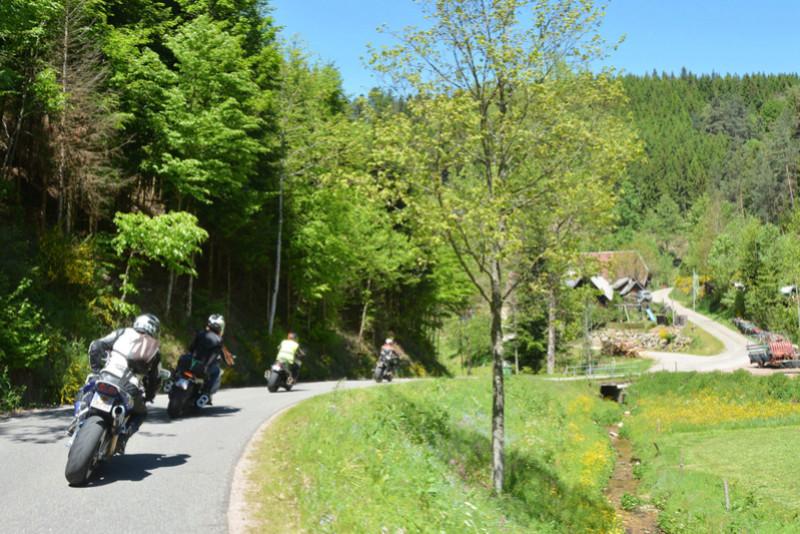 Balade en Forêt Noire - Page 2 Dsc_1013