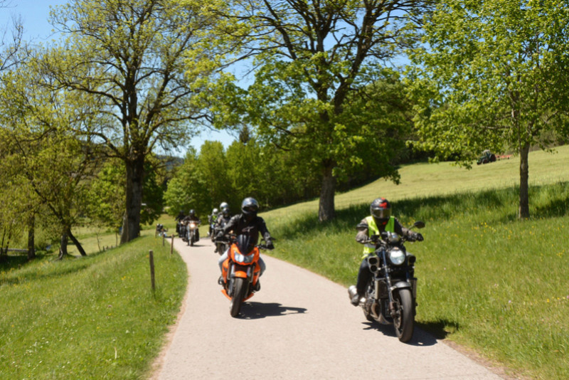 Balade en Forêt Noire - Page 2 Dsc_1322