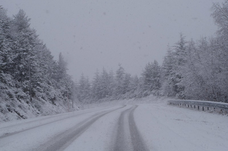L'hivernale de la Burle - 2017 17017010