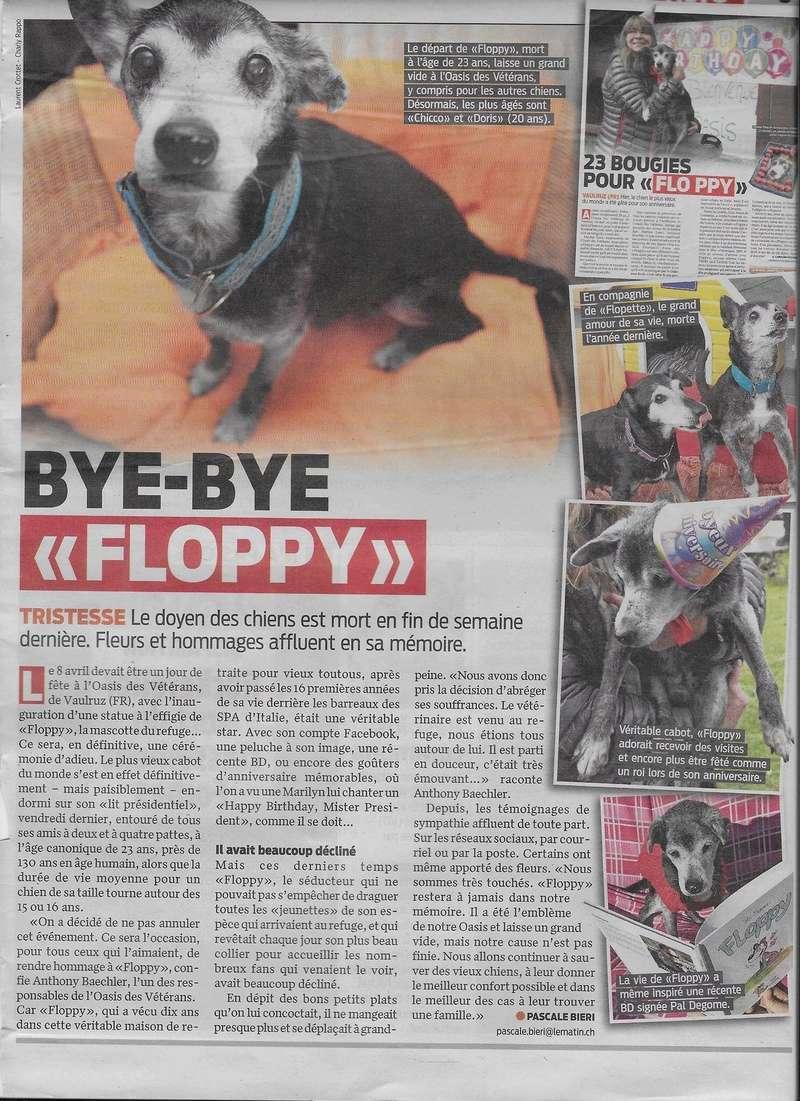 Floppy: le + vieux chien du monde pourrait être suisse! - Page 2 Image59