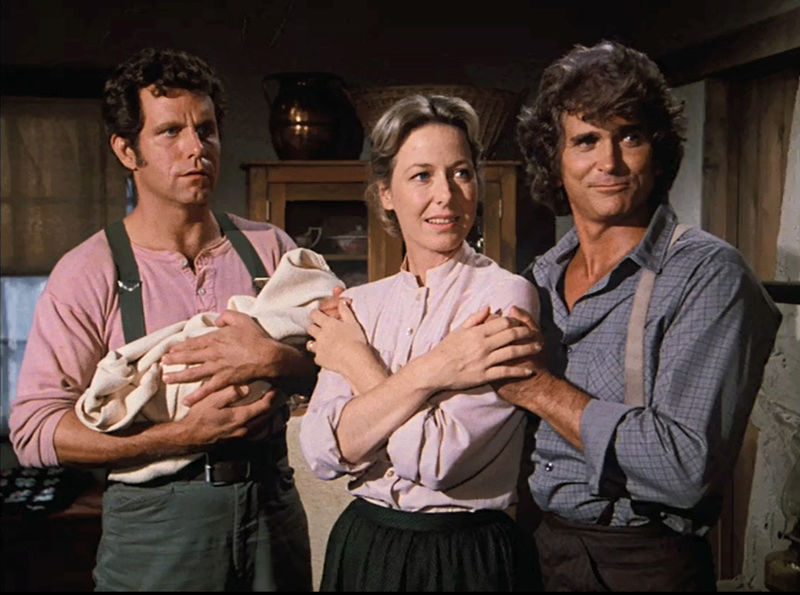 David's Little House Star Profiles and Trivia - Page 44 Sheari11