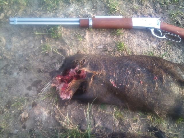 fusil à levier henry 22 mag Dsc_0210
