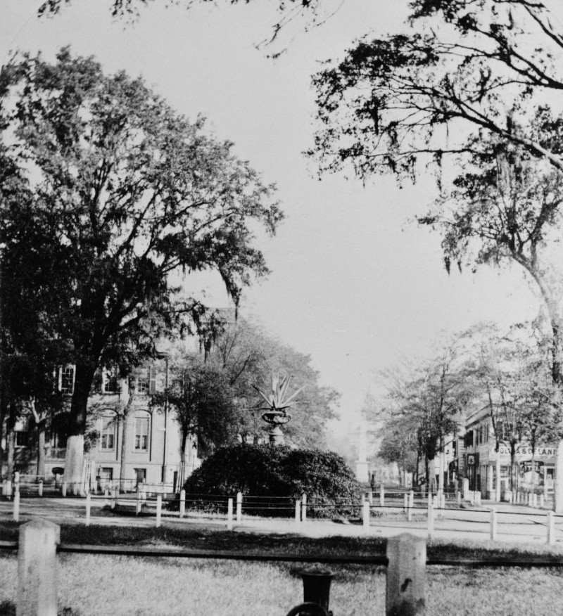Pictures of Savannah - Page 2 450_bu10