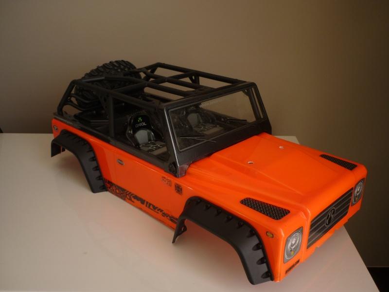 Un nouveau dingo ! P1100716